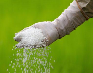 La ley federal exige descontinuar el uso del fertilizante de nitrógeno